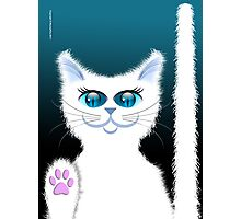 SNOWBELL THE CAT Photographic Print
