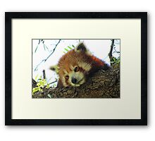 Red thoughts Framed Print