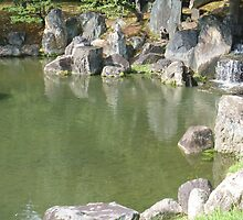 Stone Pond by Emma-Louise Bussey