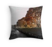 """ In A Dreamy Autumn Haze ""  Throw Pillow"