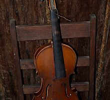 Abandoned Violin. by Julie  White
