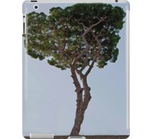 Lone Pine iPad Case/Skin