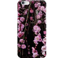 Cherry Blossom i Phone Case iPhone Case/Skin