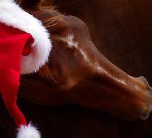 Russet Christmas by kurrawinya