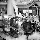 Full Steam Ahead by Georgie Hart