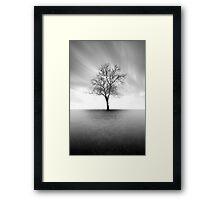 Veiled Acuity Framed Print