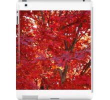 Fall Fire ^ iPad Case/Skin