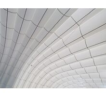 Sweeping ceiling lines Photographic Print