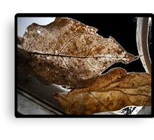 Veins Before Decay Canvas Print