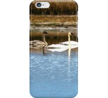 Five Swans a Swimming iPhone Case/Skin
