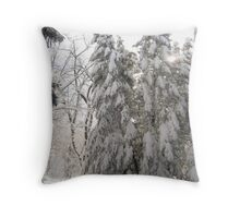 Dreaming Wisdom in Winter's Womb Throw Pillow