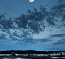 Tideland Moonrise by jimcrotty