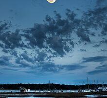 Tideland Moonrise by jimcrotty