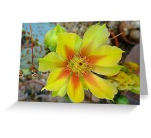 Violet Prickly Pear Greeting Card