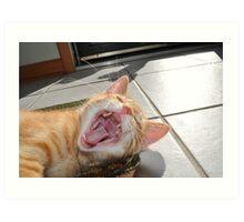 Just One Cat Treat Please! Art Print
