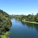 Russian River in California by daffodil