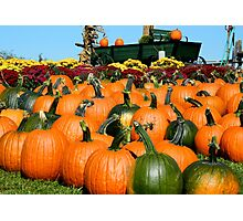Country Pumpkin Patch ^  Photographic Print