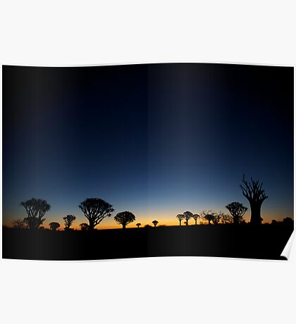 Quiver Tree Forest Poster