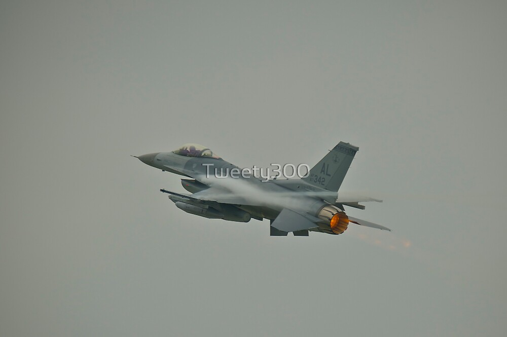 General Dynamics F16 Fighting Falcon by Tweety300