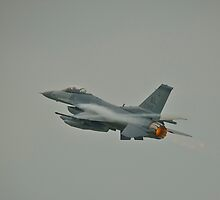 General Dynamics F16 Fighting Falcon by Tweety300