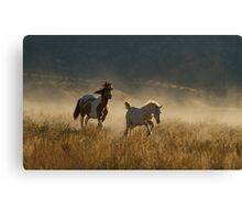Charging Through Canvas Print