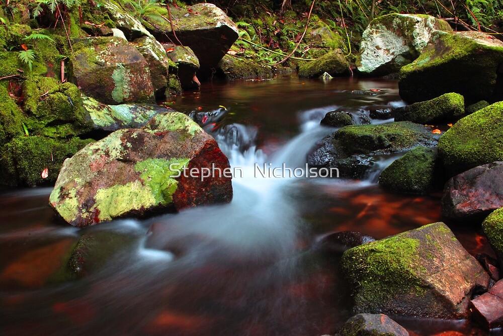 Crystal Creek by Stephen  Nicholson