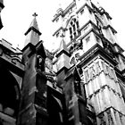 flying buttress by david balber