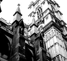 flying buttress by tinncity