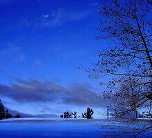 Le Ciel Bleu ! by Elfriede Fulda