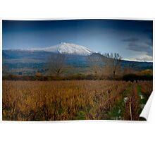 Panoramic view of Mt. Etna from lake Gurrida Poster