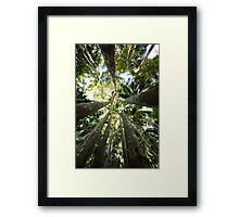 Palm Towers Framed Print