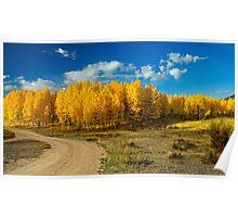 Fall Rural Roads Poster