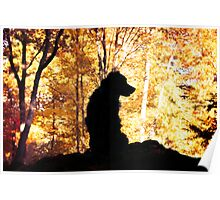 Farley in Fall Poster