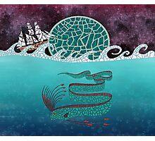 Ore Fish Mosaic Photographic Print