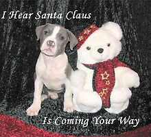 I Hear Santa Claus by Ginny York