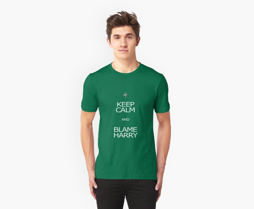 Keep calm and blame Harry by Crmsonknight