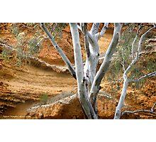 Ngaut Ngaut aboriginal site Photographic Print