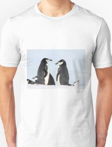 Chinstrap penguins (Pygoscelis antarctica). These birds feed almost exclusively on krill.  T-Shirt
