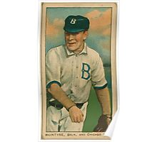 Benjamin K Edwards Collection McIntire Brooklyn Superbas Chicago Cubs baseball card portrait Poster
