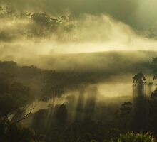 Misty Shadows by debsphotos