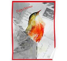 Christmas Robin Poster