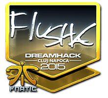flusha   DH Cluj-Napoca 2015 by SALSAMAN