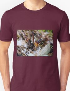 Wasps Black and Orange 4 (c)(t), a moment of their life  by Olao-Olavia par Okaio Créations Unisex T-Shirt