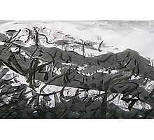 mist over the valley... Photographic Print