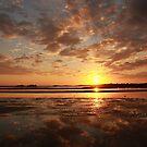 Bronze Sunset by JGetsinger