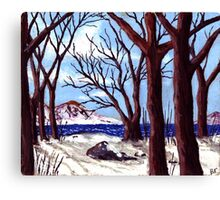Northern Landscape oil painting  Canvas Print