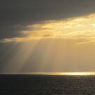 Rays of the Sun - Rayos del Sol by PtoVallartaMex