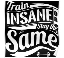 Train Insane Or Stay The Same Gym Fitness Poster