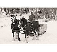 Christmas Sleigh Ride Photographic Print