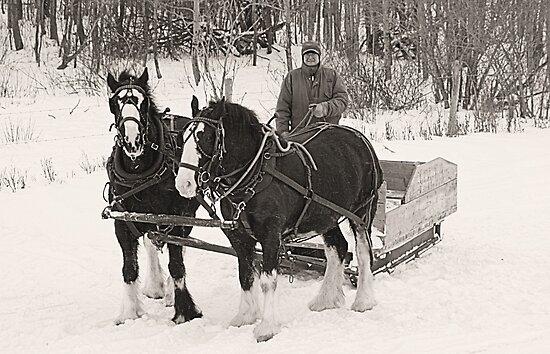 Christmas Sleigh Ride by Leslie van de Ligt